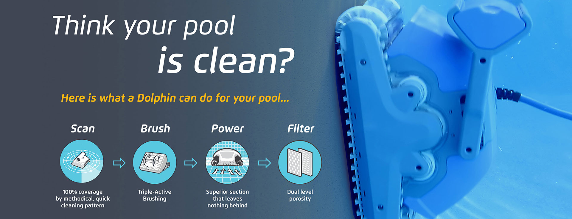 Dolphin Robot Pool Cleaner